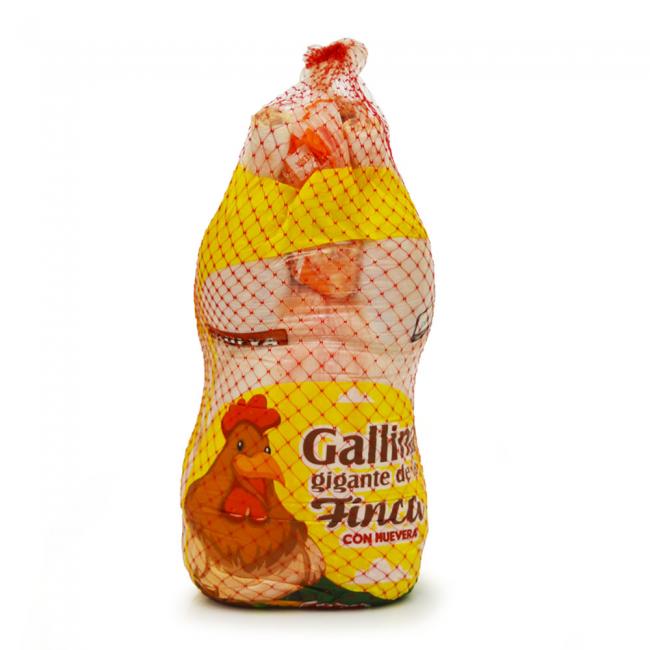 Gallina gigante criolla con huevera